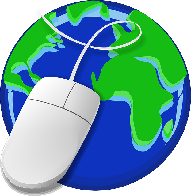 Globe and internet picture
